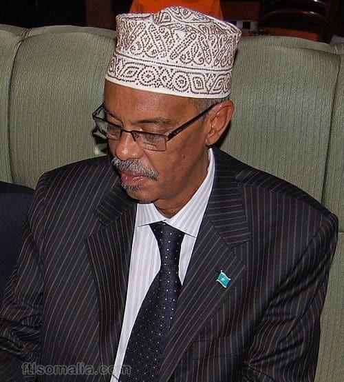 Somali Male, First Deputy Speaker, Jeylani Nur Ikar profile picture